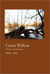allen-crack-willow