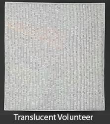 Larzelere - Translucent Volunteer