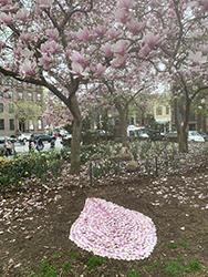 Greengold - Ephemeral Landscape Magnolia Petals